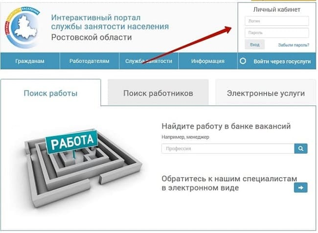 Интерактивный портал службы занятости (Донзан)